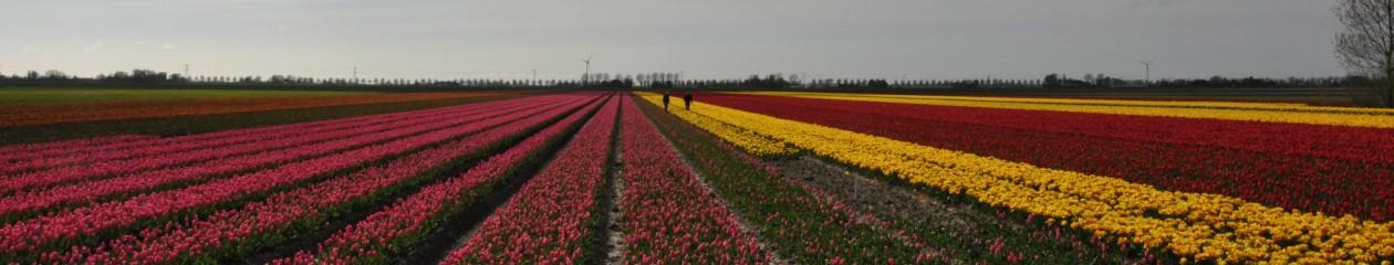 www.mijhoorjenietklagen.nl